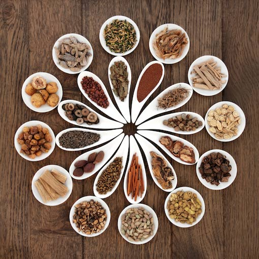 chinese fertility herbs