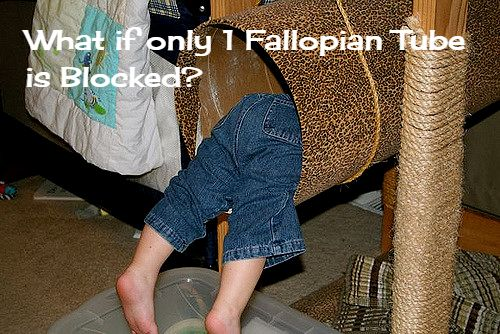 What Should You Do if Only One Fallopian Tube is Open?